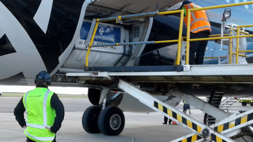 JNP Aviation Tauranga